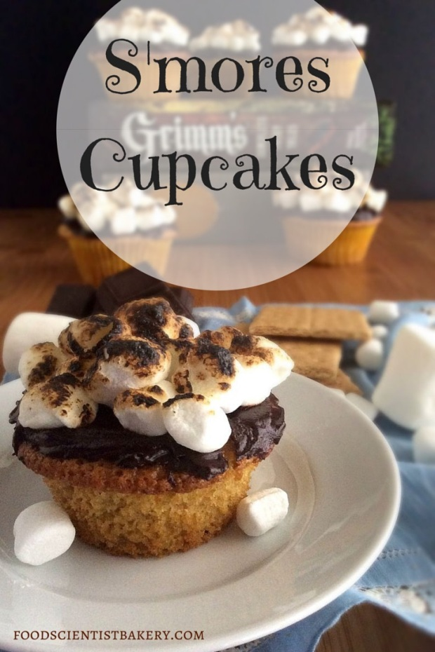 S'mores Cupcakes- graham cracker cupcake, marshmallow filling, and dark chocolate ganache! YUM!