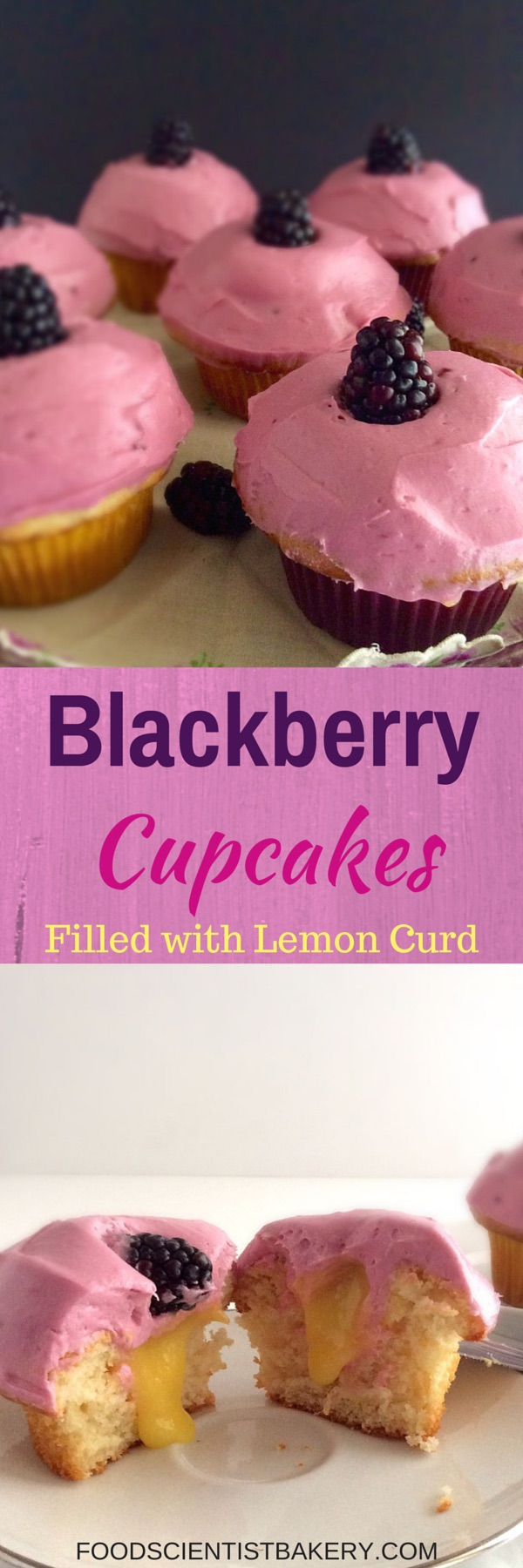 Blackberry Cupcakes Filled With Lemon Curd