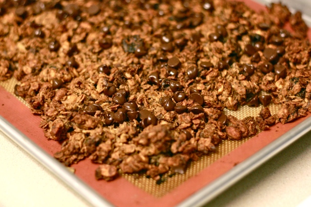 Peanut Butter Chocolate Cherry Granola
